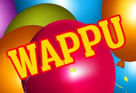 Plevnan Wappu 30.4.-1.5.2018